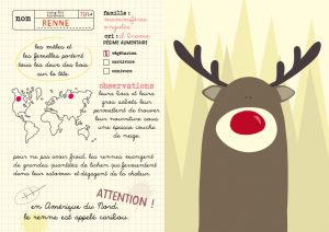 mes_animaux_du_monde_RENNE
