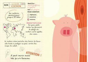 mes_animaux_du_monde_cochon