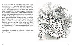 TIGRE PROTEGE_PLANCHE37_tigreauxaromates copie